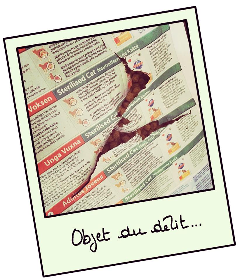 cass-du-siècle-croquette-chat