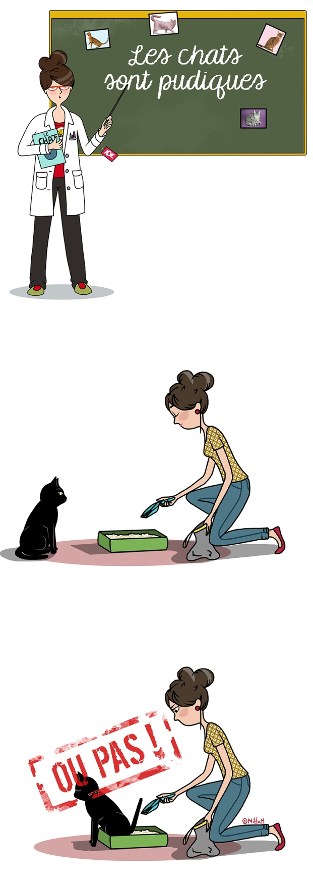 idée-reçue-sur-les-chats-miham