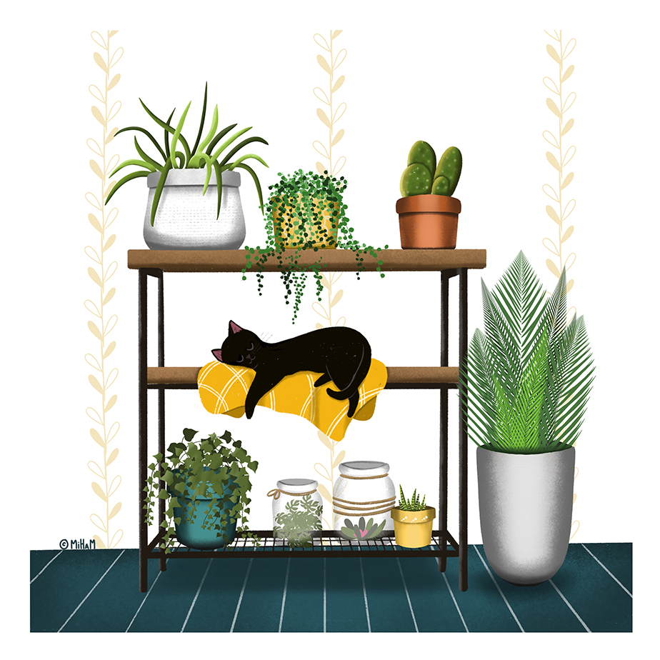 Cat and plants ©MiHaM